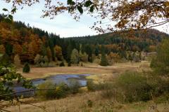 2020 10 21  paysages d'automne A Marion