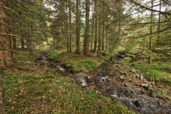 le ruisseau de Belbriette