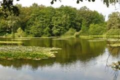 ecromagny-mille-étangs-13